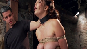 Submissive bound in company with very hot babe Holly Michaels