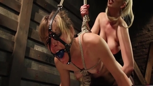 Fetish nailing along with Cherry Torn & small tits Mona Wales